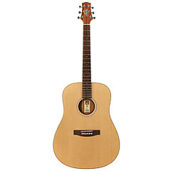 Ashton D20S NTM « Acoustic Guitar