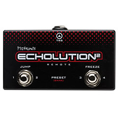 Pigtronix Echolution 2 Remote Pedal « Effect  Accessories