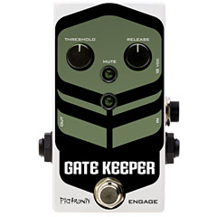 Pigtronix Gatekeeper « Guitar Effect