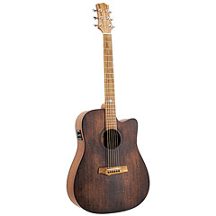 Randon RGI-10 VT-CE « Westerngitarre