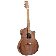 Randon RGI-14 VT-CE « Guitarra acústica