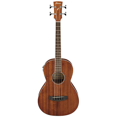 Acoustic Bass Ibanez PNB14E-OPN