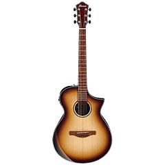 Ibanez AEWC300-NNB « Westerngitarre