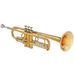 Kühnl & Hoyer Topline G 116 24 RL « Tromba perinet