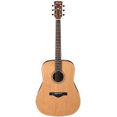 Ibanez AW65 « Guitarra acústica