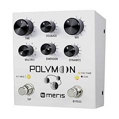 Meris Polymoon « Guitar Effect