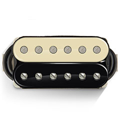 Bare Knuckle Boot Camp Old Guard Set 50 mm Zebra « Pickup E-Gitarre