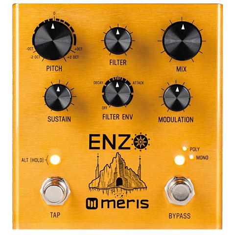 Pedal guitarra eléctrica Meris Enzo
