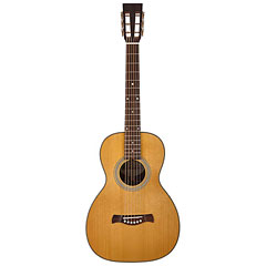 Richwood P-65-VA « Guitare acoustique