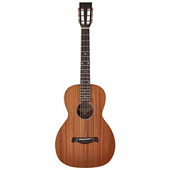 Richwood P-50 « Guitare acoustique