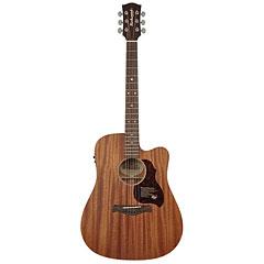 Richwood D-50-CE « Westerngitarre