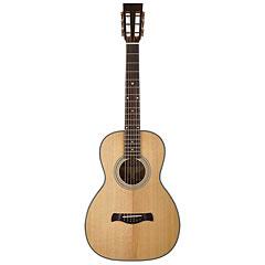 Richwood P-40 « Guitare acoustique