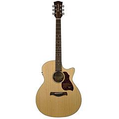 Richwood G-22-CE « Guitare acoustique