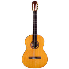 Cordoba Dolce « Classical Guitar
