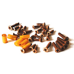 GuitarSlinger Relic Screws Set « Screws