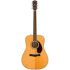 Fender PM-1E « Westerngitarre