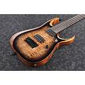 E-Gitarre Ibanez RGD71AL ANB