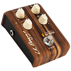 L.R. Baggs Reverb « Acoustic Guitar Effects