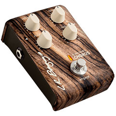 L.R. Baggs Chorus « Acoustic Guitar Effects