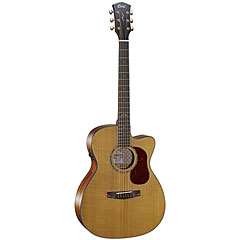 Cort Gold OC6 « Guitare acoustique