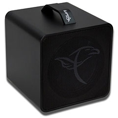 Falken1 Traveller black « Acoustic Guitar Amp