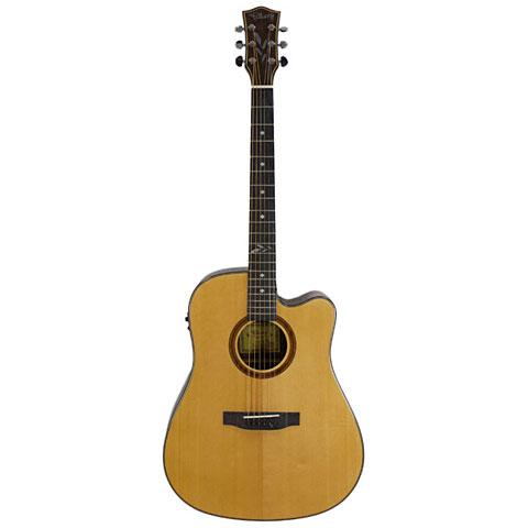 Acoustic Guitar Falken1 FW-10