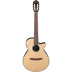 Ibanez AEG50N NT « Konzertgitarre