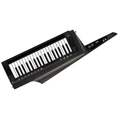 Korg RK-100S 2 Black « Synthesizer