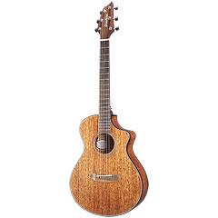 Breedlove Wildwood WWM11CE « Acoustic Guitar