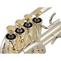 Piccolo Trompete Chicago Winds CC-TR9100S Piccolo Trumpet