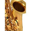 Saxofón alto Chicago Winds CC-AS5100L Pro Alto Sax