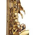 Saxofón Tenor Chicago Winds CC-TS4100L Tenor Sax