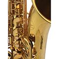 Saxophone ténor Chicago Winds CC-TS4100L Tenor Sax