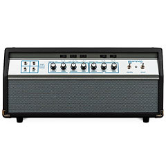 Ampeg Heritage 50th Anniversary SVT « Bass Amp Head