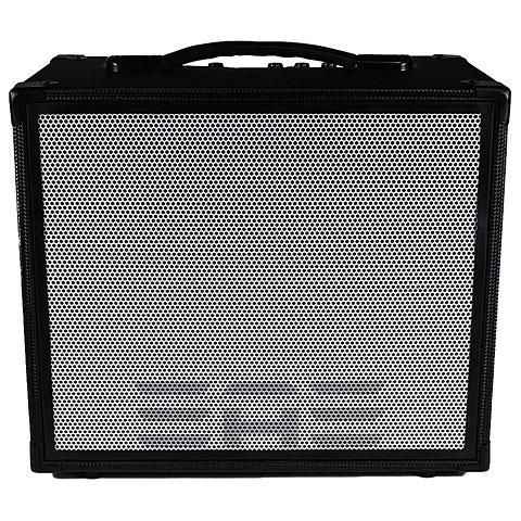 Akustikgitarren-Verstärker Elite Acoustics A6-55