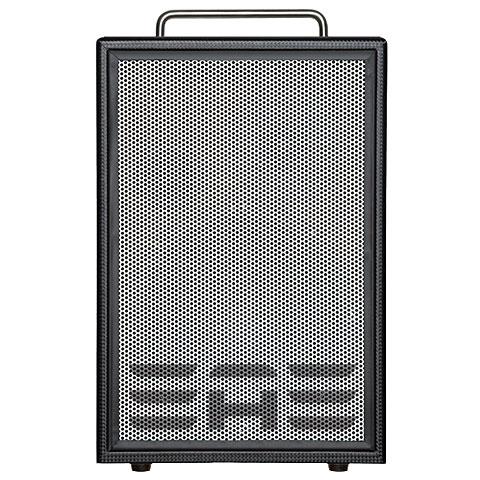 Amplificador guitarra acústica Elite Acoustics D6-MKII