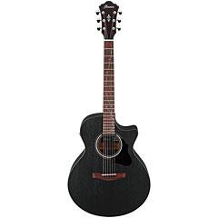 Ibanez AE295-WK « Guitarra acústica
