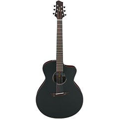 Ibanez JGM10-BSN « Guitare acoustique