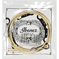 Western & Resonator Guitar Strings Ibanez IACS6C
