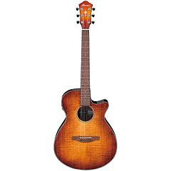 Ibanez AEG70-VVH « Westerngitarre