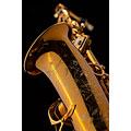 Altsaxophon Selmer Supreme