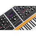 Sintetizador Moog One - 8 Showroom