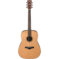 Ibanez AW65-LG « Acoustic Guitar