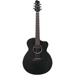 Ibanez JGM5-BSN « Acoustic Guitar
