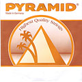 Pyramid Bouzouki oktaviert Loop-end « Strings