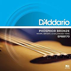 D'Addario EPBB170 .045-100 « Corde basse acoustique