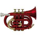 Trompette de poche Roy Benson Student PT-101R