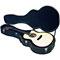 Estuche guitarra acúst. Rockcase Standard RC10614B (2)