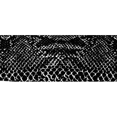T.A.D. snakeskin 136x400cm « Accessoires/amplis