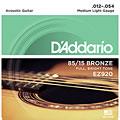 Струны для акустической гитары  D'Addario EZ920 .012-054